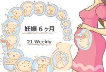 妊娠21週
