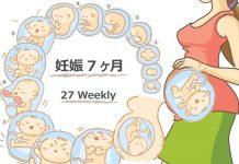 妊娠27週