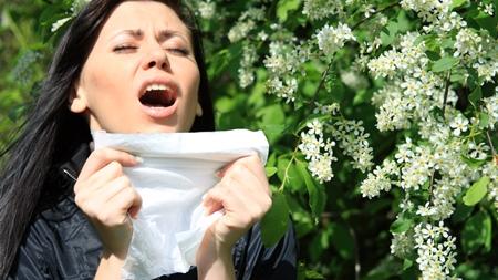 花粉症になりやすい理由1
