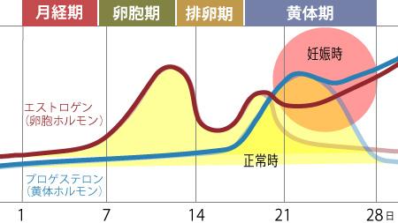 妊娠時の黄体ホルモンの増加グラフ