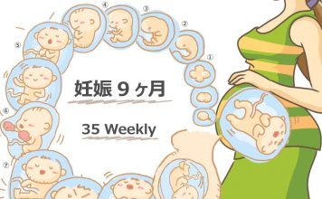 妊娠35週