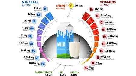 豊富な牛乳の栄養素