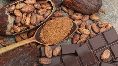 チョコレートに含まれるカフェイン