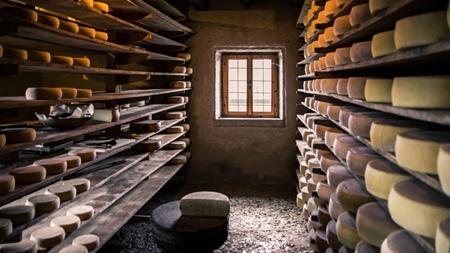輸入チーズの場合(加熱殺菌処理不明の場合)