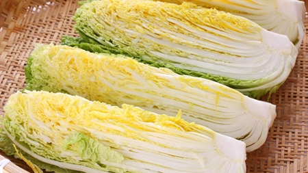 白菜の栄養成分について