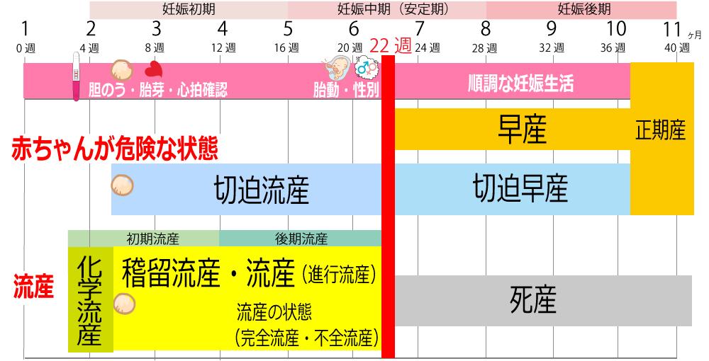 胎動を感じる時期や妊娠カレンダー