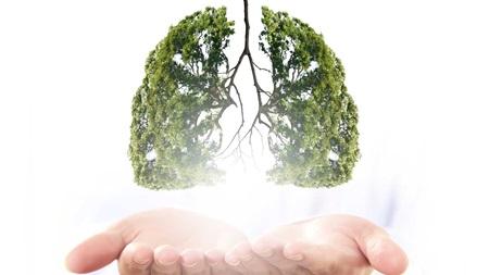 肺の成長がポイント