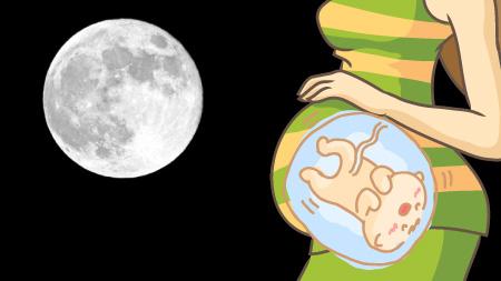 特に妊婦に影響があるのは何故?