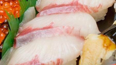 水銀を多く含む魚